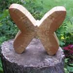 Papillon V 1